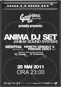 Anima DJ Set @ Gambrinus Pub