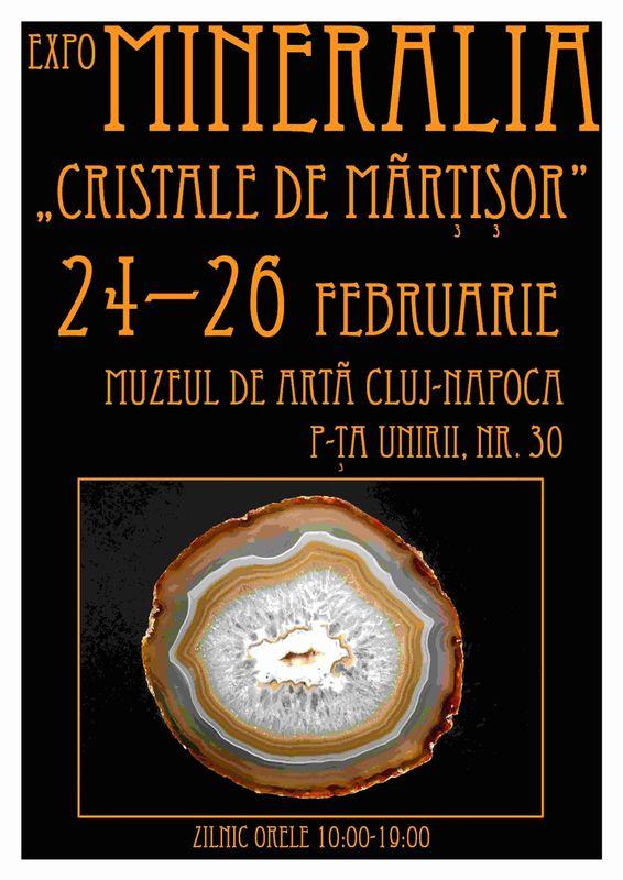 Expo Mineralia @ Muzeul de Arta