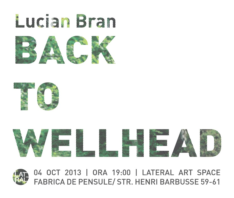 Lucian Bran, Back to Wellhead @ Lateral Art Space