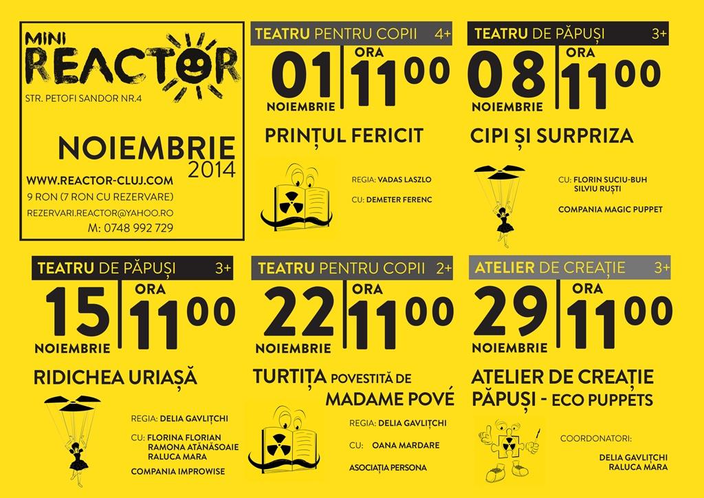 Mini Reactor – Noiembrie 2014