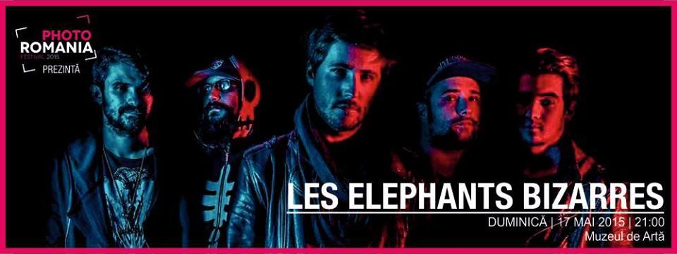 Les Elephants Bizarres @ Muzeul de Artă