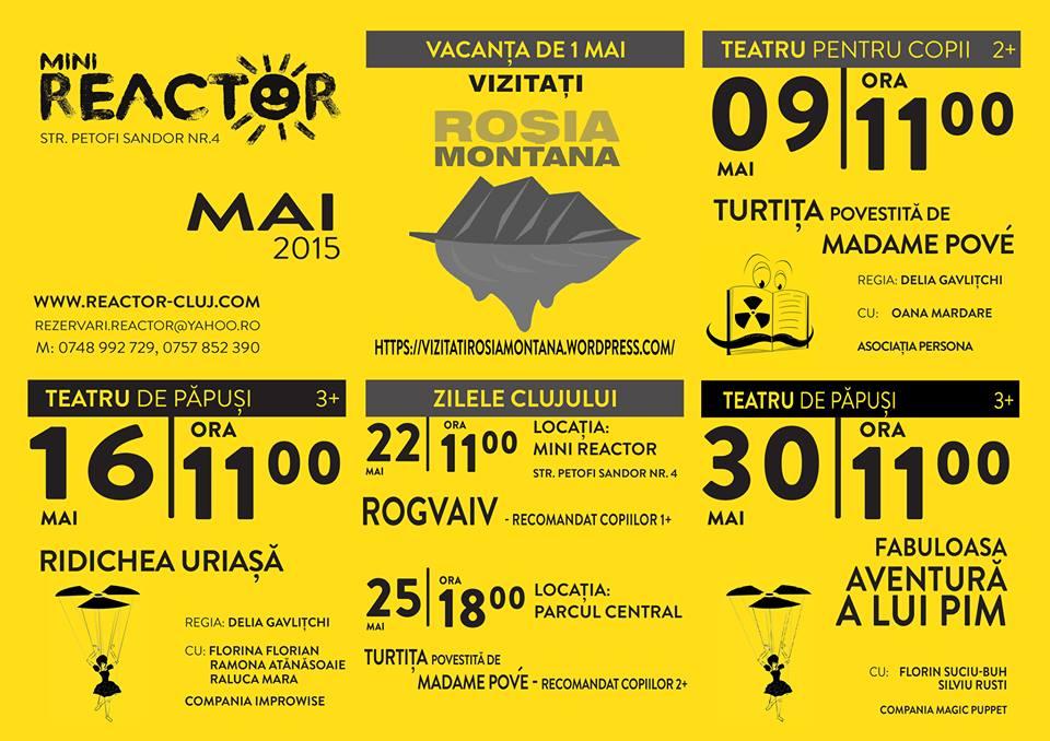 Programul lunii mai la MiniReactor