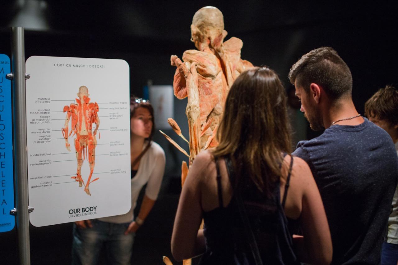 Expoziția Our Body, ultima lună la Cluj