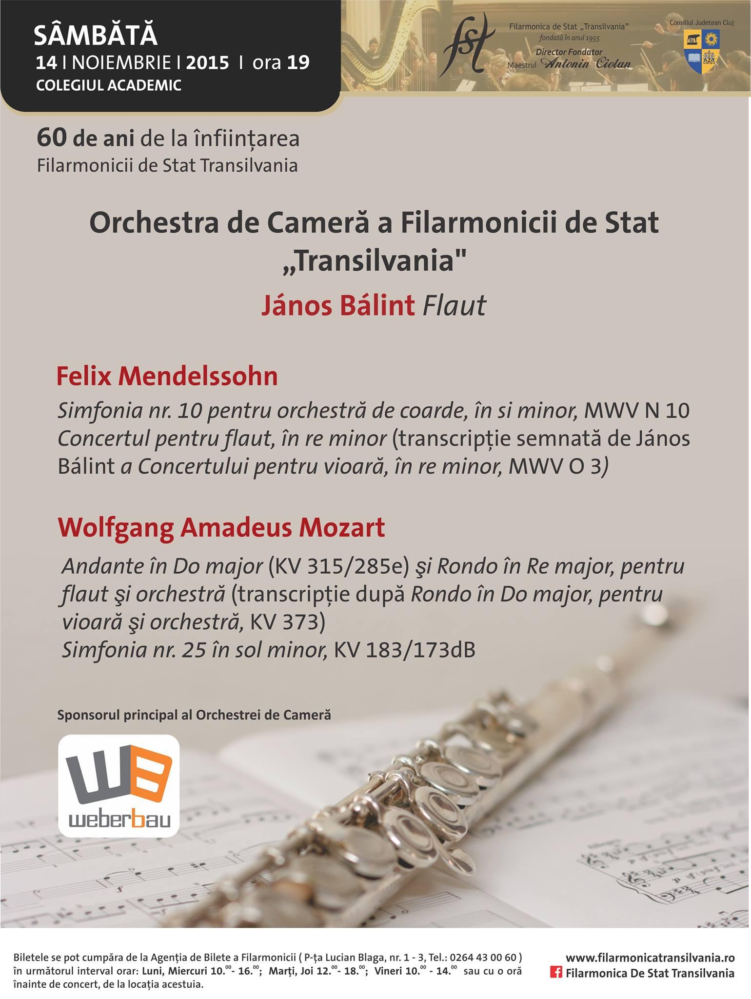 """Orchestra de Cameră a Filarmonicii """"Transilvania"""""""