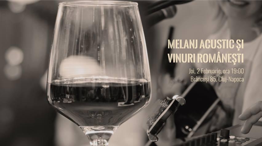 Degustare de vinuri românești și muzică live @ Brâncuși 85 – Record Bistro