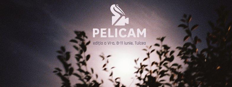 Pelicam Festival 2017