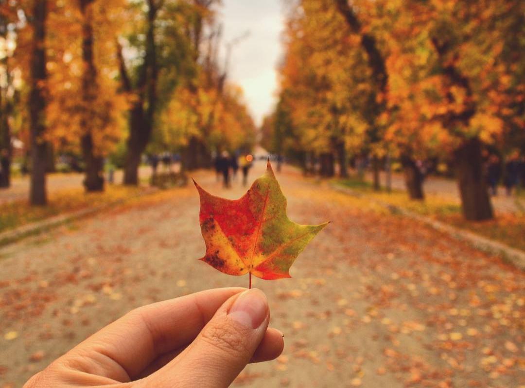 7 idei care să te inspire săptămâna aceasta în Cluj