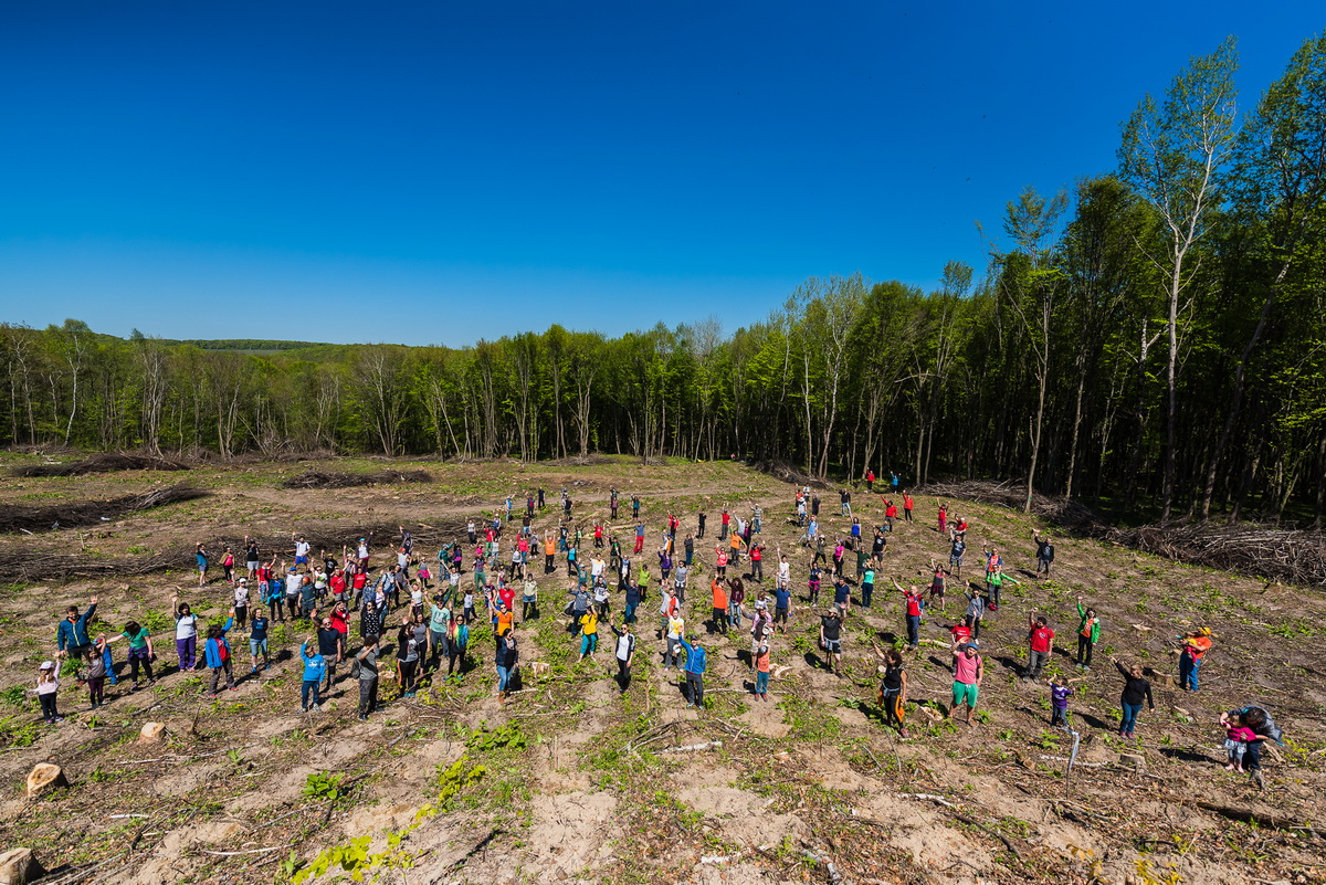 Cum a fost la împădurire la Vâlcele alături de voluntarii msg Maraton Apuseni