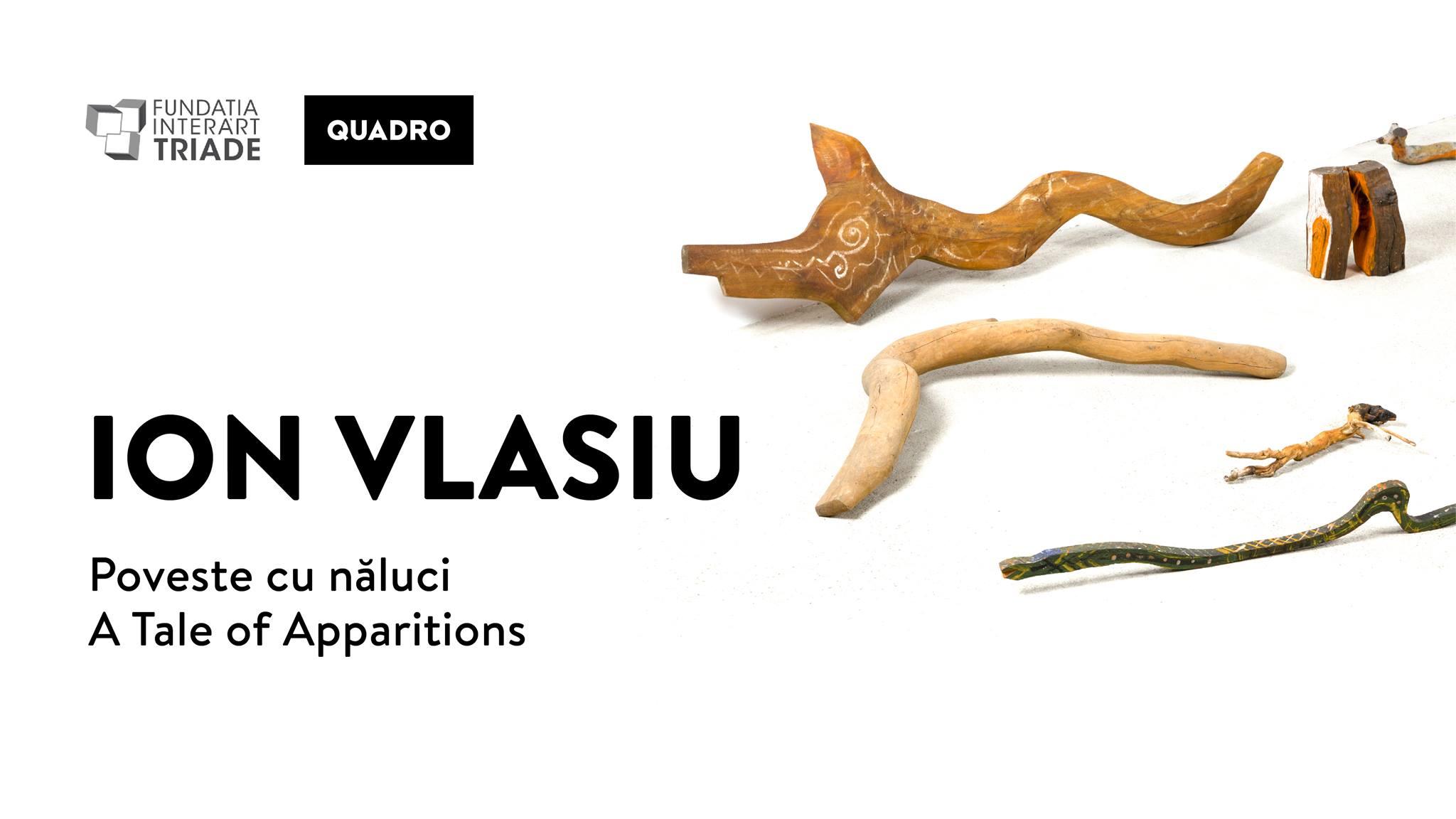 Expoziția Ion Vlasiu. Poveste cu năluci