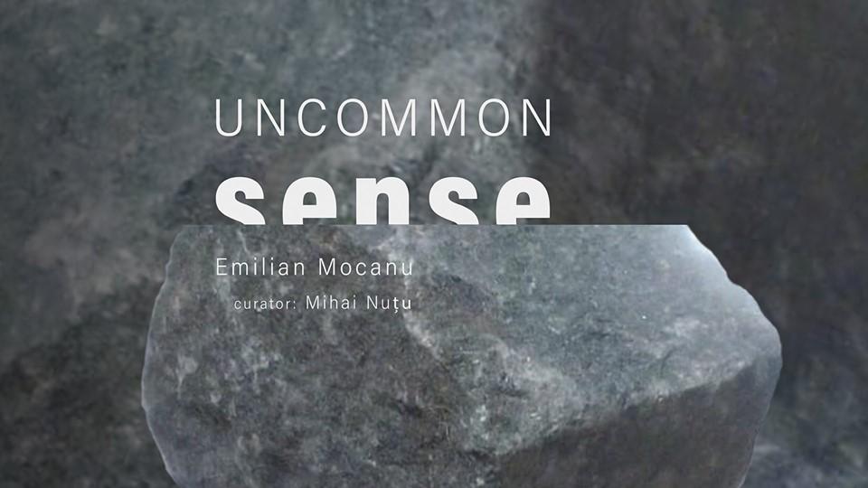 Uncommon Sense - Emilian Mocanu