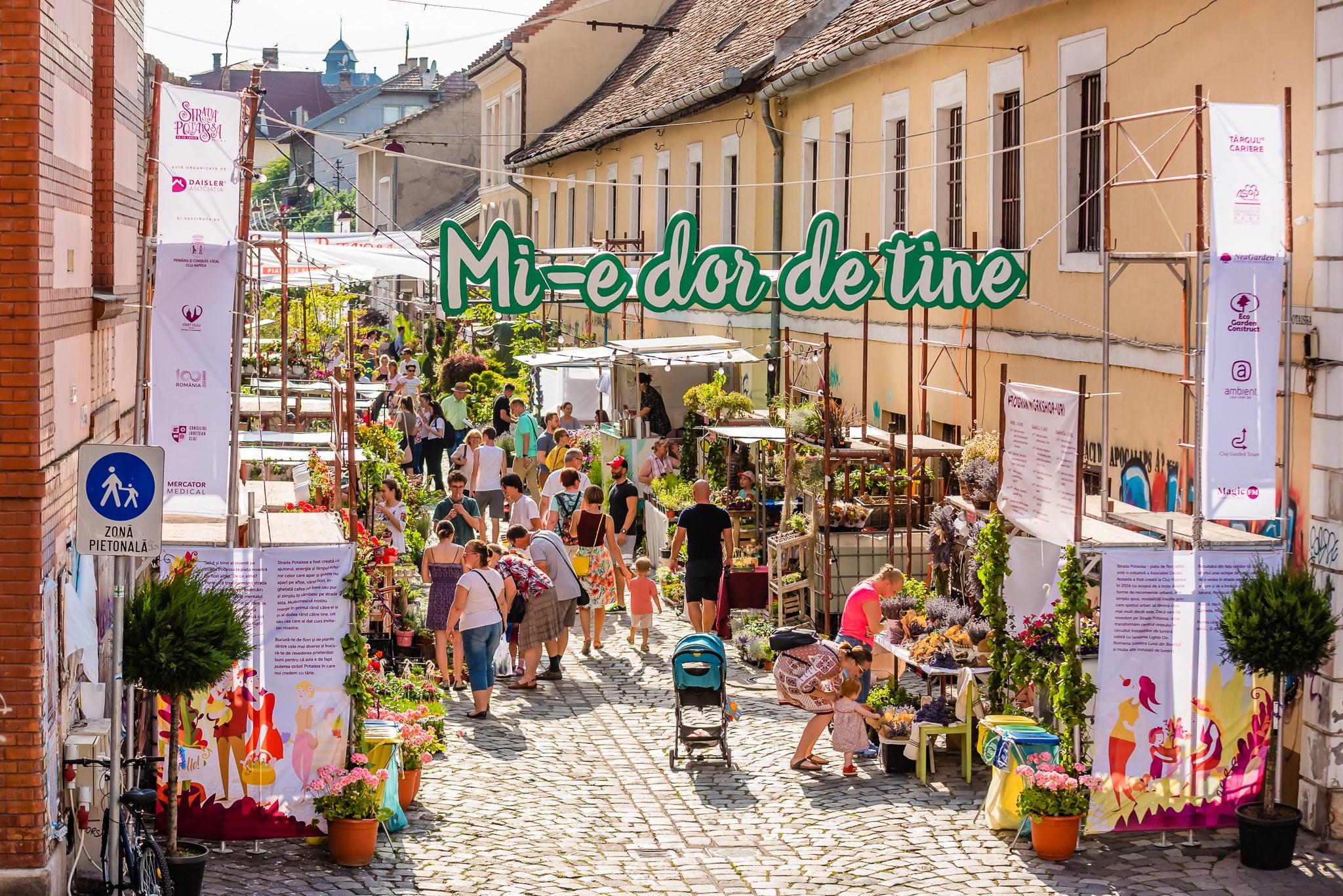 Cum a fost în primele două zile la Strada Potaissa – Piața de flori altfel
