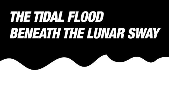 The Tidal Flood Beneath the Lunar Sway / Group Exhibition