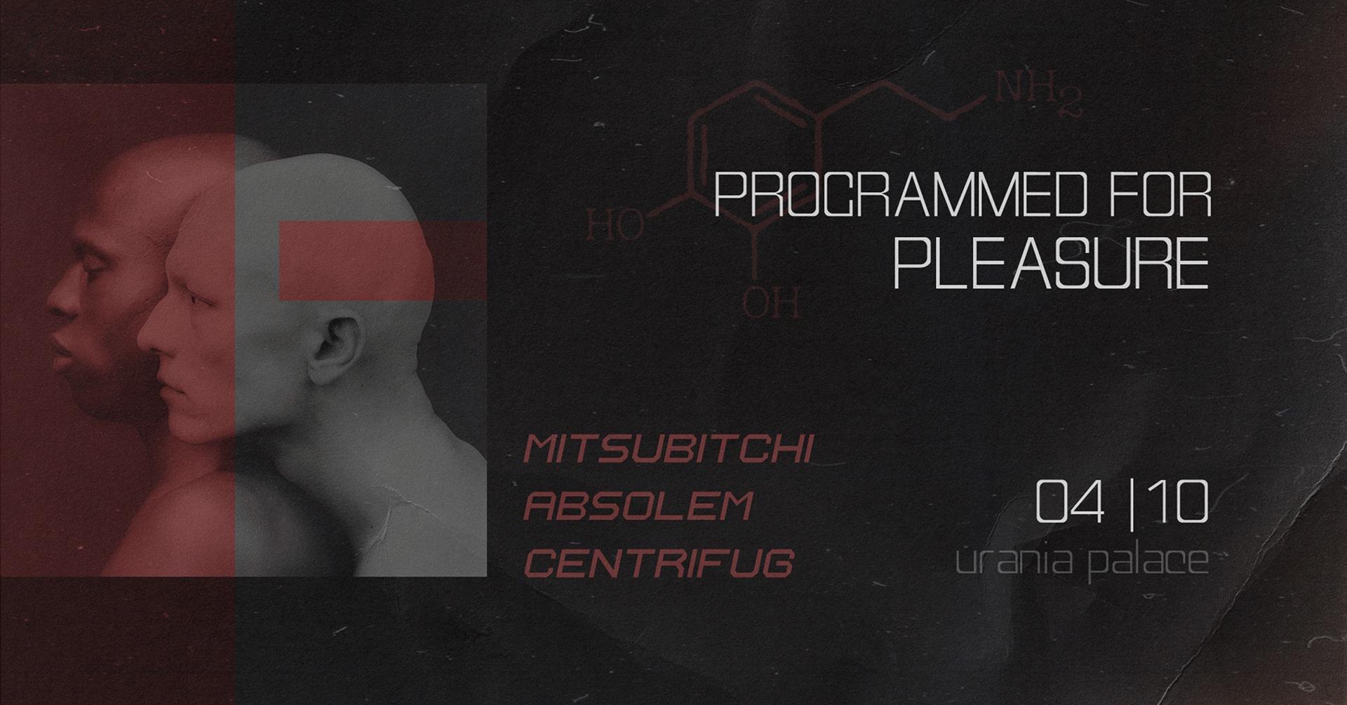 Programmed for pleasure