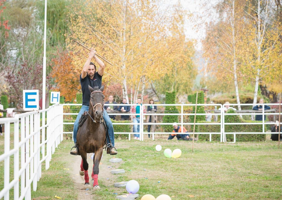 Au mai rămas trei zile până începe Dracula Horse Festival la Domeniul Dracula Daneș