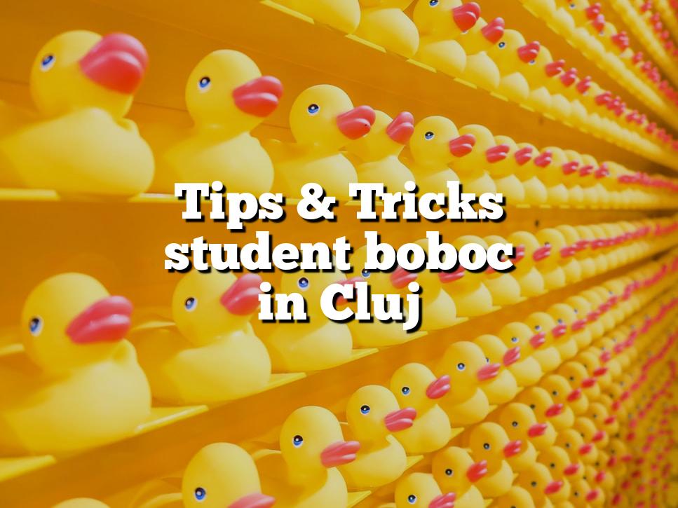 Tips & tricks ca să te acomodezi cât mai repede ca student boboc în Cluj