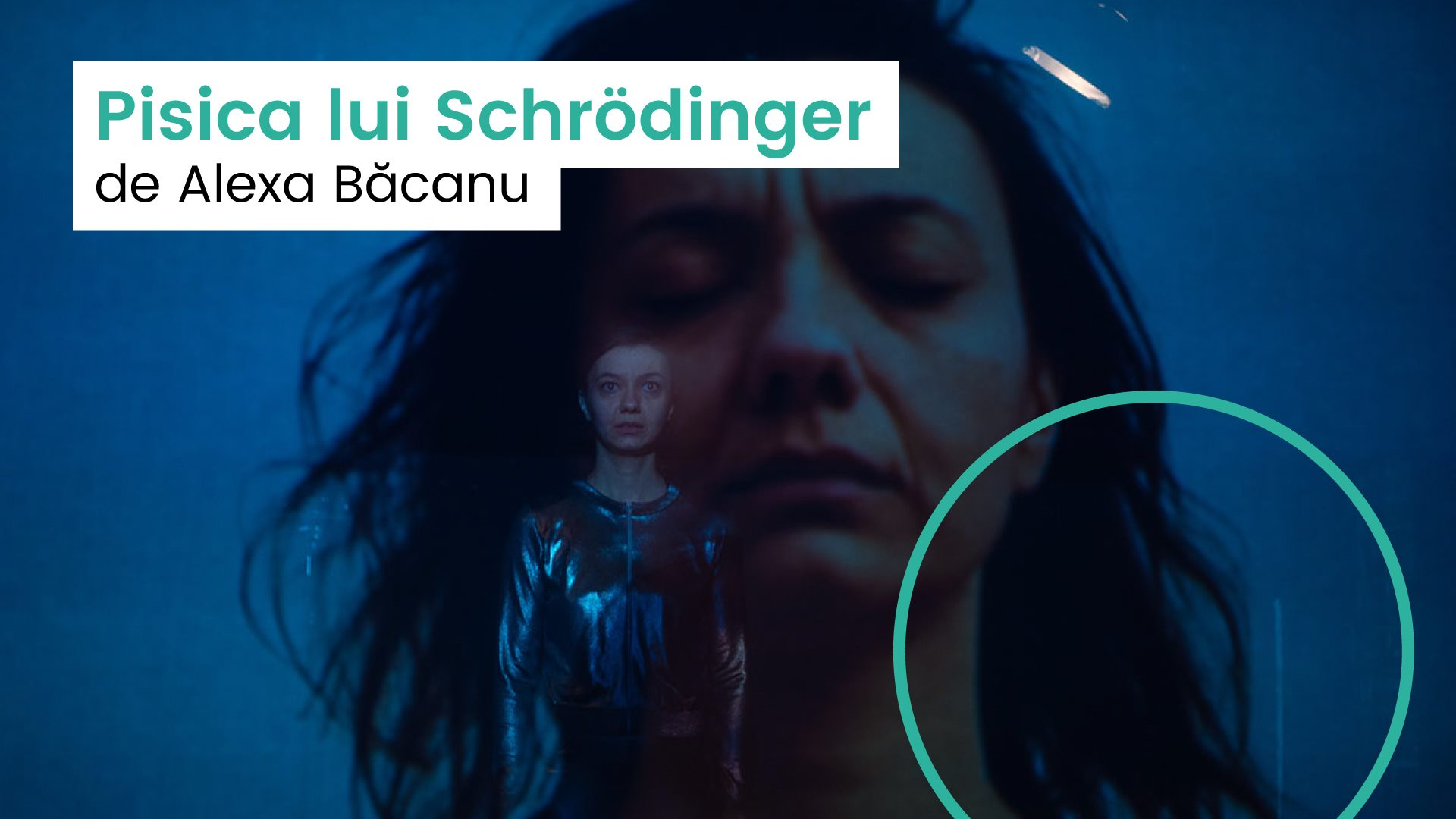 Pisica lui Schrödinger | FDP10