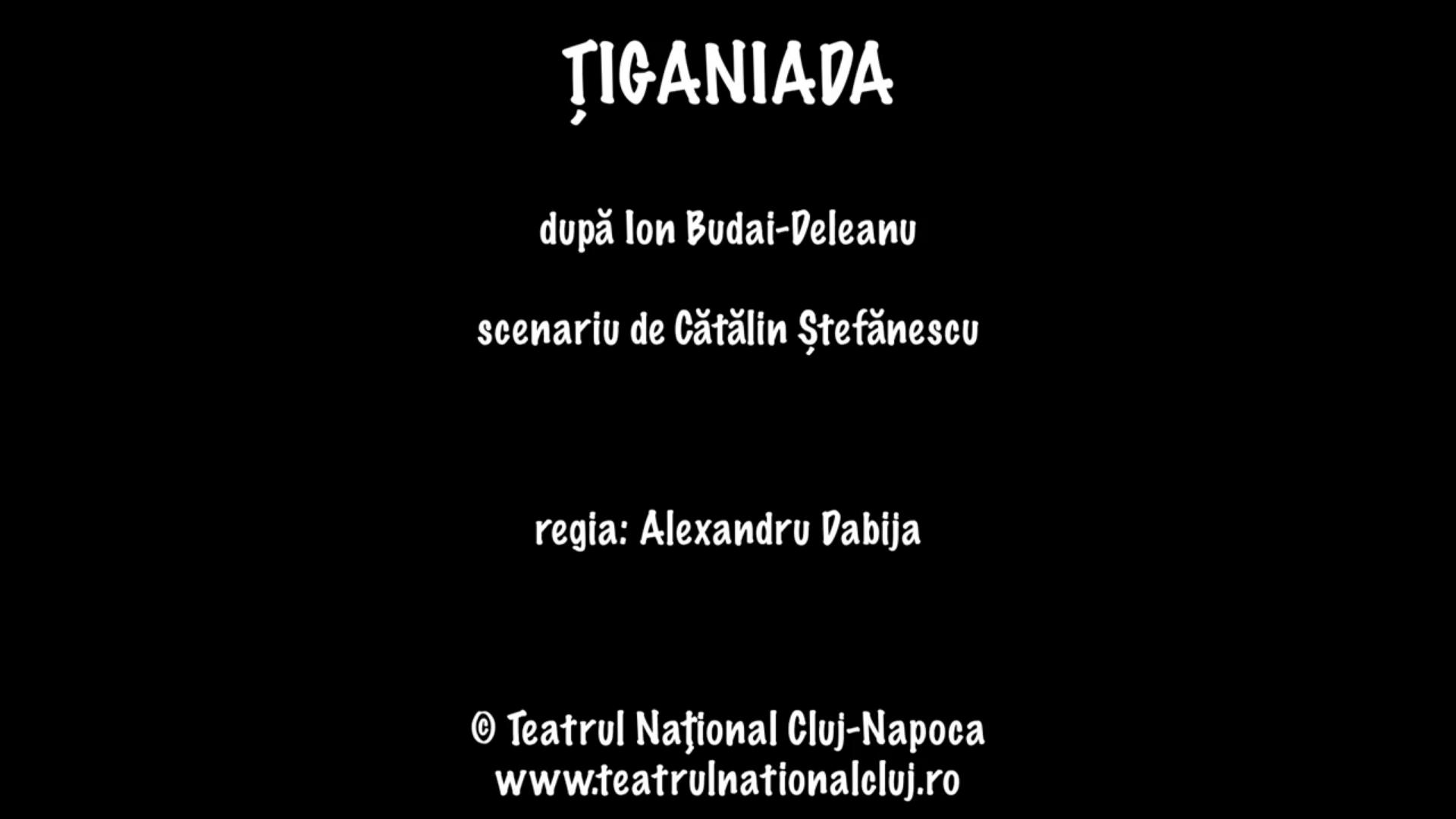 Țiganiada, scenariu de Cătălin Ștefănescu, după I. Budai-Deleanu