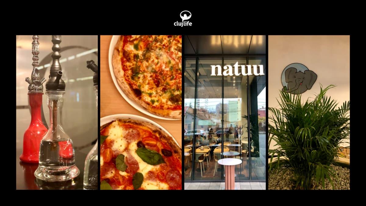 4 localuri noi deschise în #Cluj: Natuu, Acrobatica 2, Tembo Cafe și Quantum Cafe