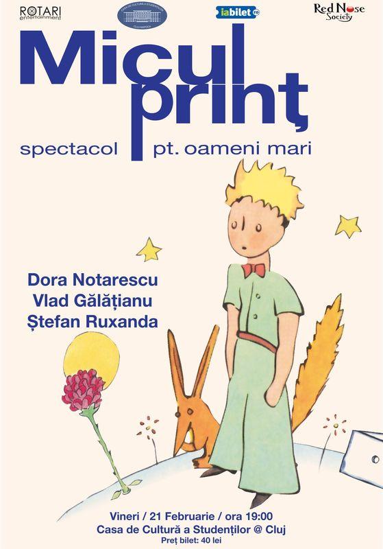 Micul prinț: Spectacol pentru oameni mari