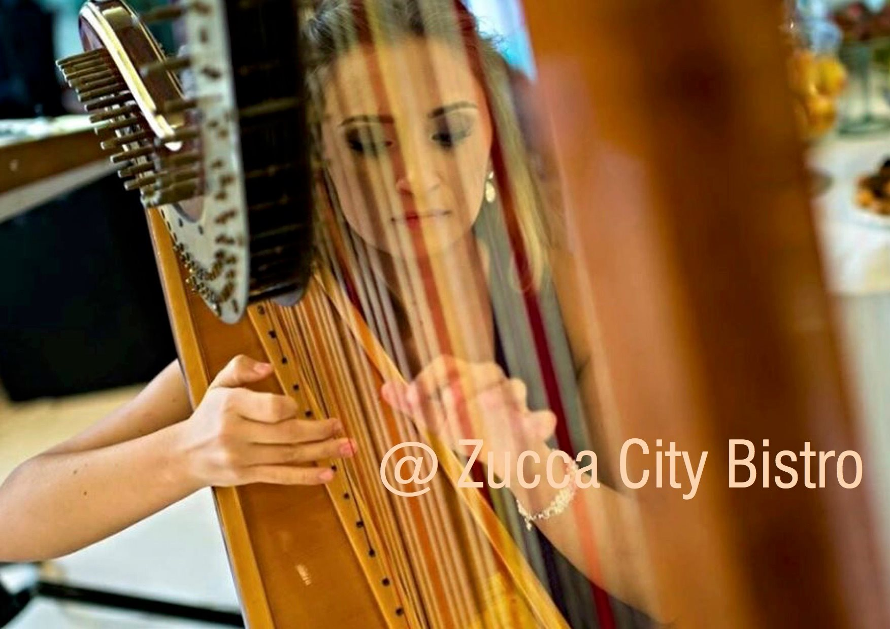 Harp recital: Valentine's Day Dinner