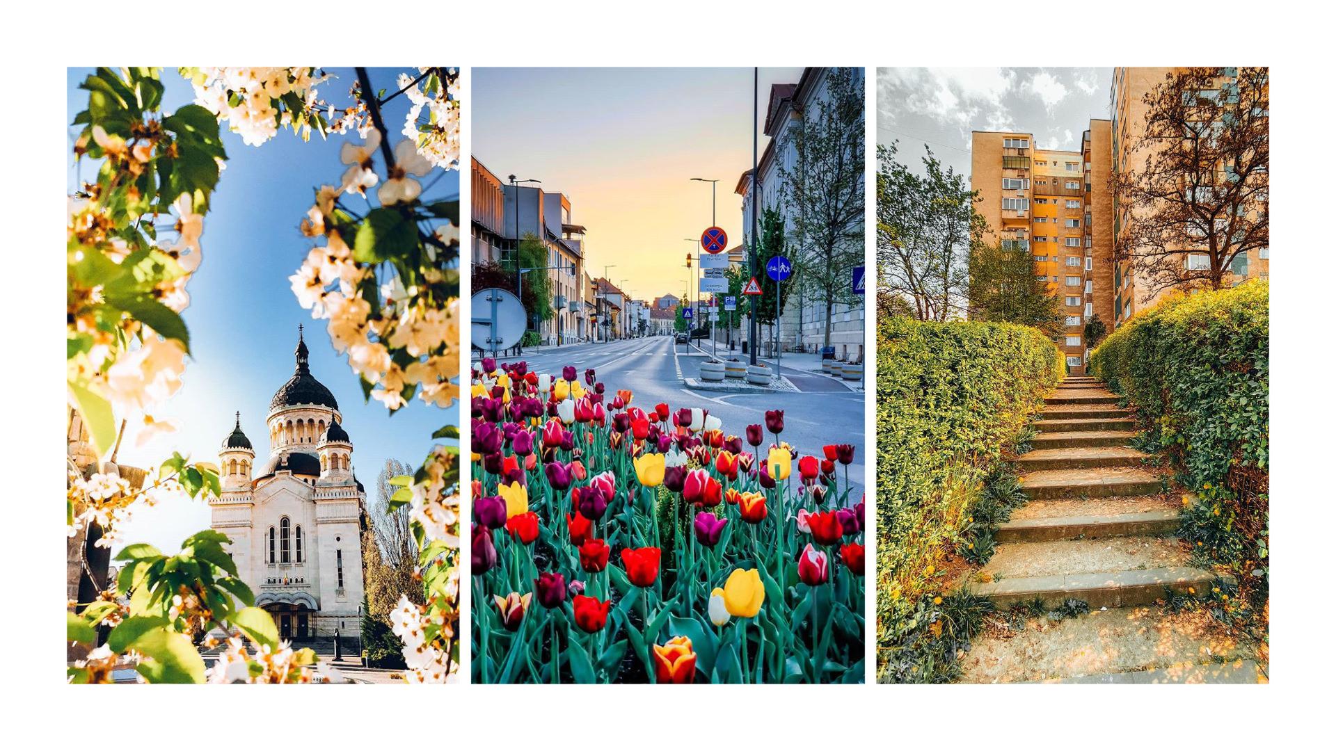 Cele mai frumoase poze din Cluj postate în luna aprilie pe Instagram