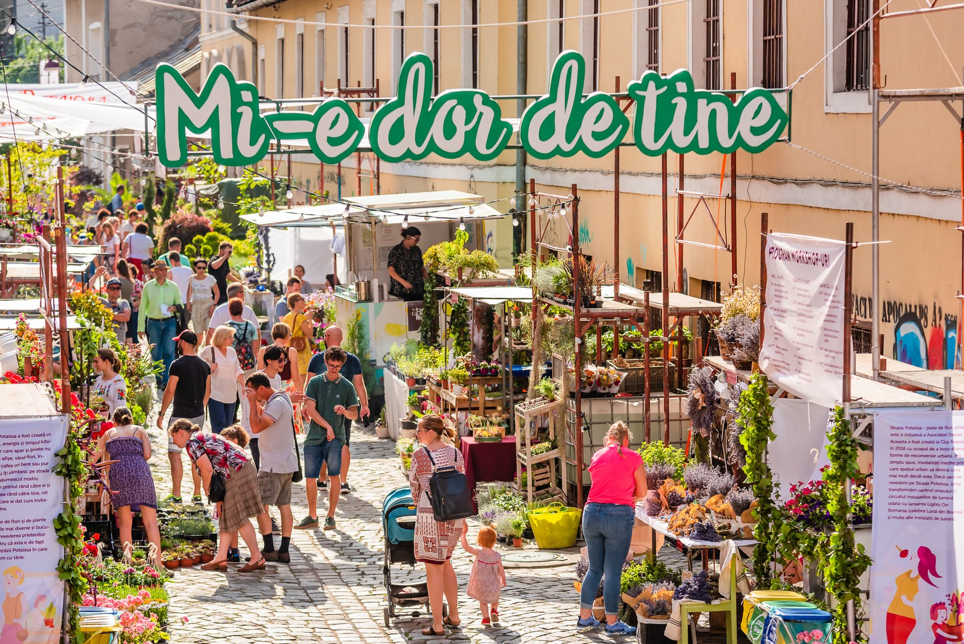 Strada Potaissa – Piața de flori altfel, ediția 4