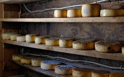 Produse lactate de la producători locali din Cluj