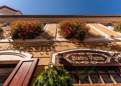 Bistro Viena