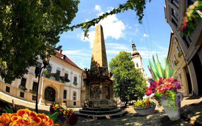 """Proiectul """"Centrul Verde"""" vrea să transforme imaginea generală din zona Piața Muzeului din Cluj-Napoca"""