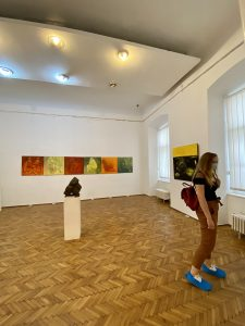 muzeu-arta