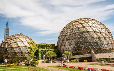 Grădina Botanică Jibou