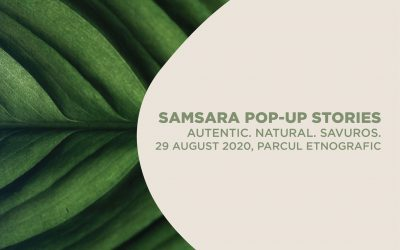 Samsara Pop-Up Stories