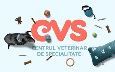 6 motive să apelezi la Centrul Veterinar de Specialitate (CVS) pentru animalul tău de companie