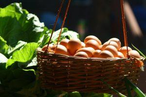 producători locali de ouă