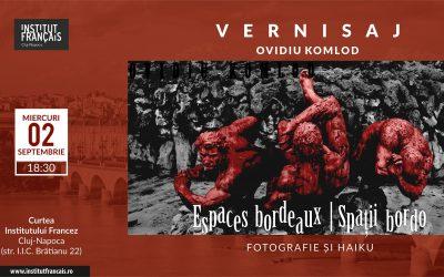 "Expoziție ""Spații bordo"" de Ovidiu Komlod"
