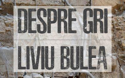 Expoziție DESPRE GRI de Liviu Bulea