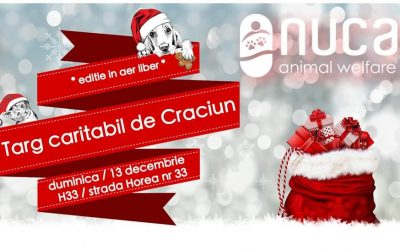 NUCA Christmas Fair [ediție în aer liber]