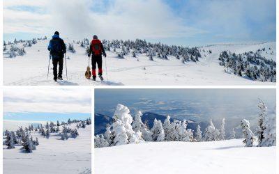 Drumeție de iarnă aproape de Cluj: Vârful Vlădeasa
