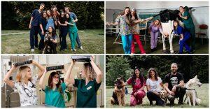 Cum e să fii student la... Facultatea de Medicină Veterinară din Cluj