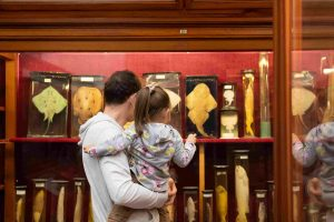 Cum a fost la... Noaptea Muzeelor în Cluj