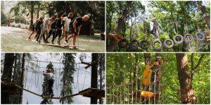 6 parcuri de aventură aproape de Cluj unde te poți distra vara aceasta