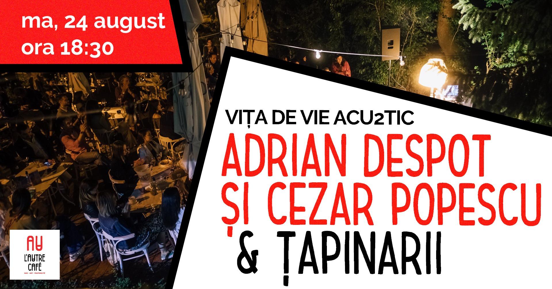 Concert Vita de vie Acu2tic & Tapinarii