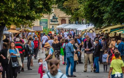 S-a încheiat cea de-a XII-a ediția a Zilelor Culturale Maghiare din Cluj